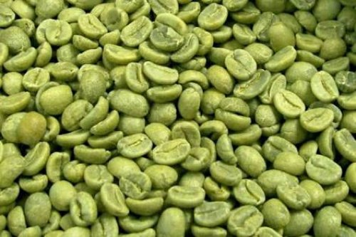 BULK ORGANIC GREEN COFFEE BEANS