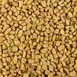 BULK ORGANIC FENUGREEK(METHIDANA)